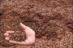 With its earthy dark brown color and fresh pine scent, Fine Pine Bark Mulch is a customer favorite. Light, stable, and non-colloidal.